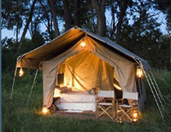 Chobe Under Canvas, Chobe
