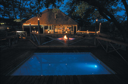 Mankwe Bush Lodge, Chobe