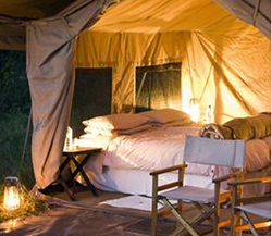 Savute under Canvas, Chobe