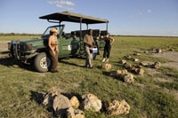 Enjoy a relaxing game drive at the Khama Rhino Sanctuary